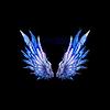 Крылья Звездопада
